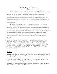God's Purpose of Grace - Daniel Akin