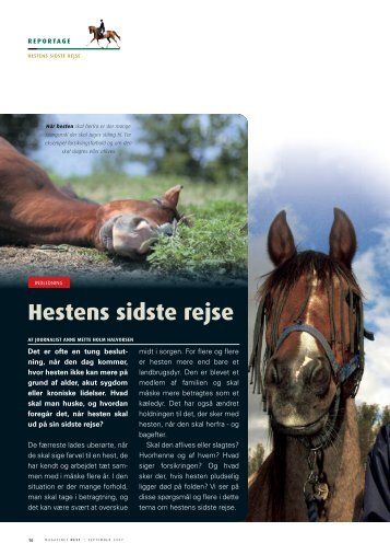 Hestens sidste rejse - Hestemagasinet.dk