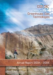 CO2CRC Annual Report 2004-2005 (PDF 4.25 MB)