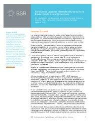 Condiciones Laborales y Derechos Humanos en la ... - dr-cafta - BSR