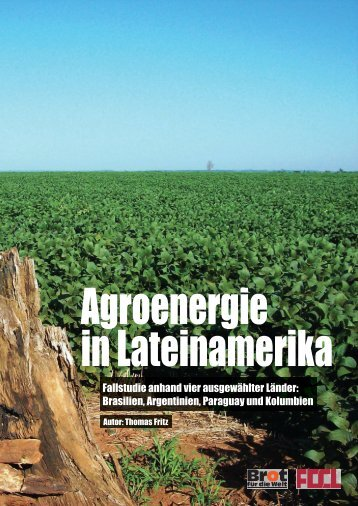 Agroenergie in Lateinamerika - FDCL