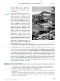 Filosofie orientali - Loescher Editore - Page 7