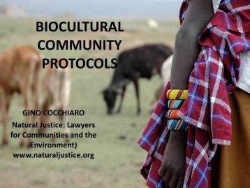 Bio-cultural Protocols as a Community-based ... - Natural Justice