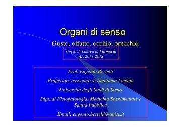 Organi di senso - Farmacia - Università degli Studi di Siena