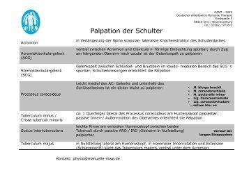 Palpation der Schulter - MWE Physio
