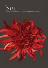 Download - Christchurch Art Gallery
