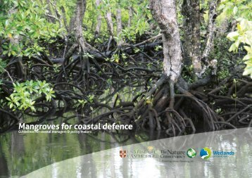 Mangroves for Coastal Defence_A Decisionmakers Guide_Web Version