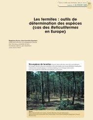 outils de détermination des espèces - Bois et forêts des tropiques