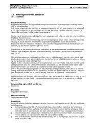 Retningslinier for solceller.pdf - Ringkøbing-Skjern Kommune