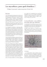 Les mycorhizes, pour quels bénéfices ? - Jejardine.org