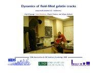 Dynamics of fluid-filled gelatin cracks