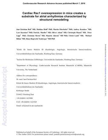 B - Cardiovascular Research