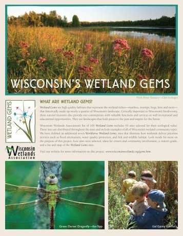 WISCONSIN'S WETLAND GEMS - Wisconsin Wetlands Association