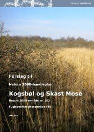 Skitse til handleplan: N18: Rold Skov ... - Tønder Kommune