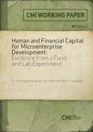 Human and Financial Capital for Microenterprise ... - CMI