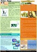 Revista_13_Edicao_Out 2010 - Revista Multicultural Brasil & Italia - Page 5