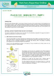 P A S S I V E   I M M U N I T Y : PART 1 - The Poultry Site