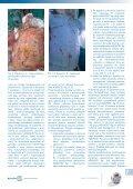 Media-Med - mojarana.pl - Page 7