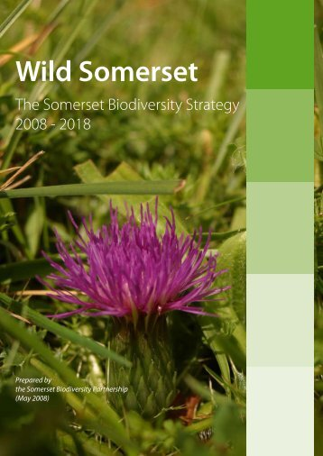 Wild Somerset - Somerset County Council