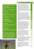 Wild Somerset - Somerset County Council - Page 5