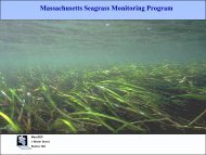 Charles Costello, Massachusetts Department of ... - GeoTools - NOAA