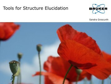 Tools for Structure Elucidation