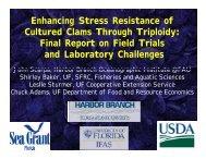 Enhancing Stress Resistance of C lt d Cl Th h T i l id Cultured Clams ...
