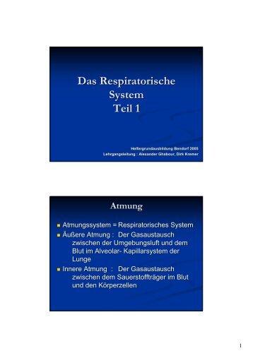 Das Respiratorische System Teil 1 - Intern