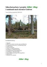 Säker Skogs verksamhet i samband med stormen Gudrun (PDF)