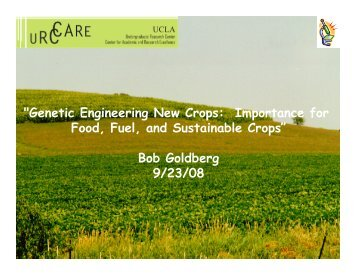 """""""Genetic Engineering New Crops: Importance for Food, Fuel, and ..."""