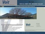 555_USHwy 395_Washoe_Flyer120811.indd - Voit Real Estate ...