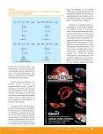 Trigo en Aplicaciones - AlimentariaOnline - Page 4