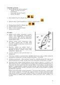 Elektroforesa proteinů séra Vlastnosti proteinů - Ústav lékařské ... - Page 6