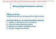 Ethique/Expérimentation animale - Plateforme societal