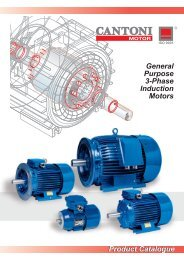 Product Catalogue General Purpose 3-Phase ... - Cantoni Group