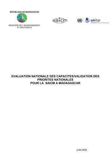 rapport d'evaluation sur la capacite nationale en matiere ... - UNITAR