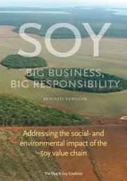 Addressing the social- and environmental impact of the soy value ...