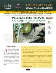 Plagas del olivo y su manejo en el valle de Azapa - Platina - INIA