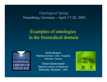 Examples of ontologies in the biomedical domain