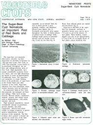 391k pdf file - New York State Integrated Pest Management Program ...