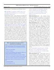 descargar el informe en formato pdf - HidrocarburosBolivia.com