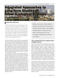 Grimm et al. 2000.pdf - Global Institute of Sustainability - Arizona ...