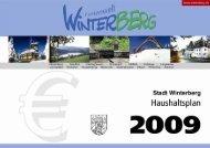 Produkthaushalt 2009 - Rathaus Winterberg