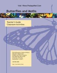 Butterflies and Moths - PedagoNet