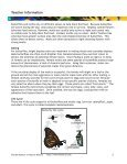 Butterflies and Moths - PedagoNet - Page 6