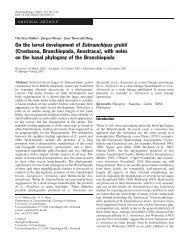 On the larval development of Eubranchipus grubii (Crustacea ...