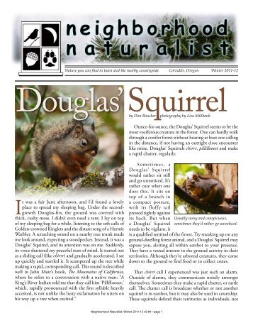 Squirrel Douglas' By Don Boucher Photography By Lisa Millbank