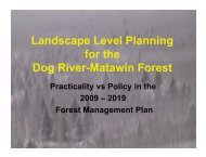 Landscape Level Planning for the Dog River-Matawin Forest