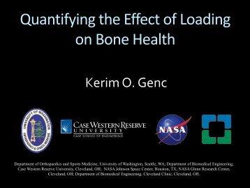 Quantifying the Effect of Loading on Bone Health - University of ...