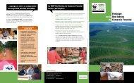 Participe en la Red Ibérica de Comercio Forestal - WWF